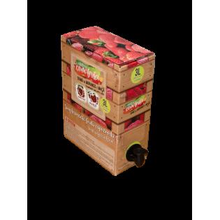 Sumo Natural Box Maçã e Morango 3L
