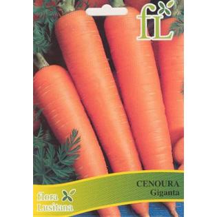 Semente Cenoura Giganta 5gr