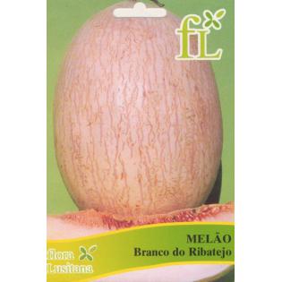 Semente Melão Branco 10grs