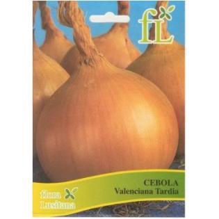 Semente Cebola Valenciana Tardia  10grs